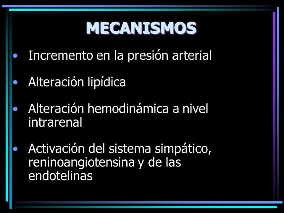 MECANISMOS Incremento en la presión arterial Alteración lipídica