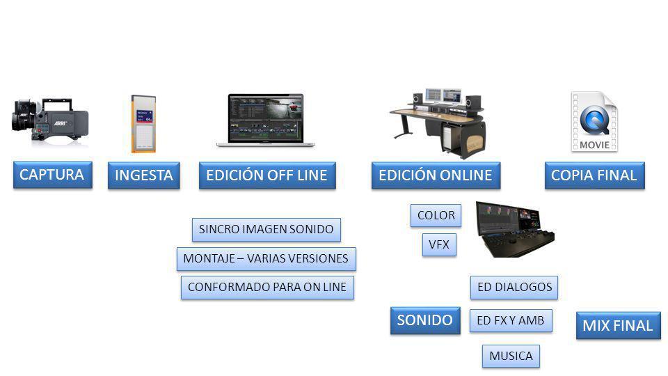 EDICIÓN ONLINE CAPTURA INGESTA EDICIÓN OFF LINE COPIA FINAL SONIDO