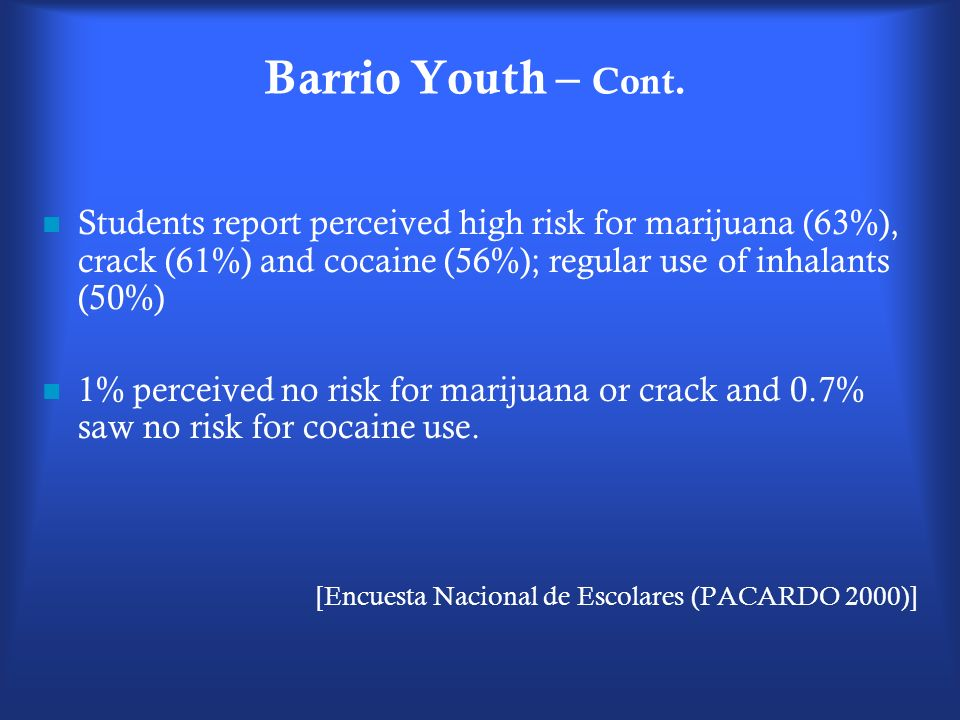 Barrio Youth – Cont. Students report perceived high risk for marijuana (63%), crack (61%) and cocaine (56%); regular use of inhalants (50%)