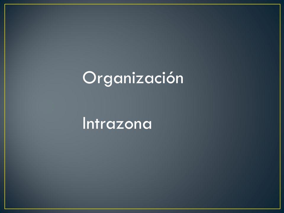 Organización Intrazona