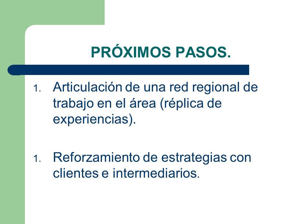 PRÓXIMOS PASOS. Articulación de una red regional de trabajo en el área (réplica de experiencias).