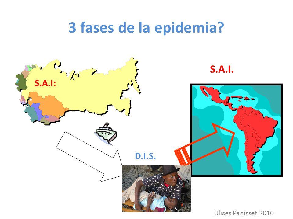 3 fases de la epidemia S.A.I. S.A.I: D.I.S. Ulises Panisset 2010