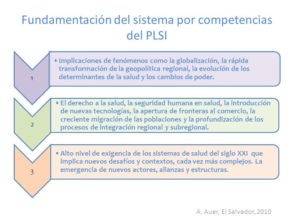 Fundamentación del sistema por competencias del PLSI
