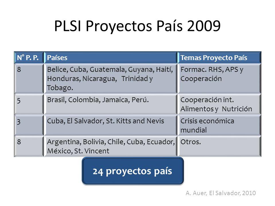 PLSI Proyectos País 2009 24 proyectos país N° P. P. Países