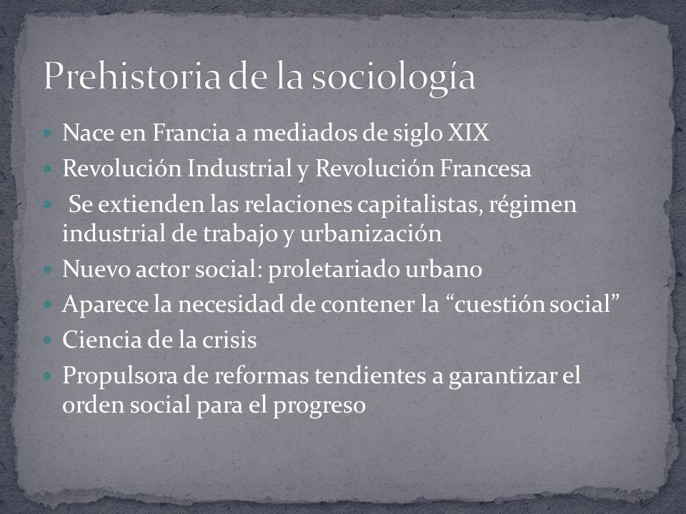 Prehistoria de la sociología
