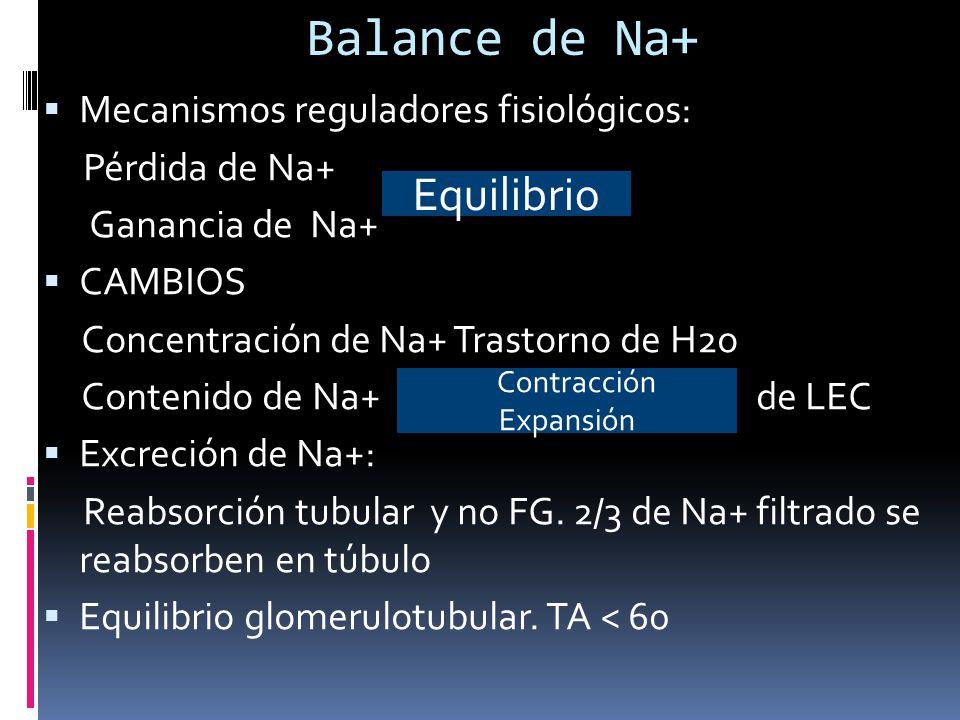 Balance de Na+ Equilibrio Mecanismos reguladores fisiológicos: