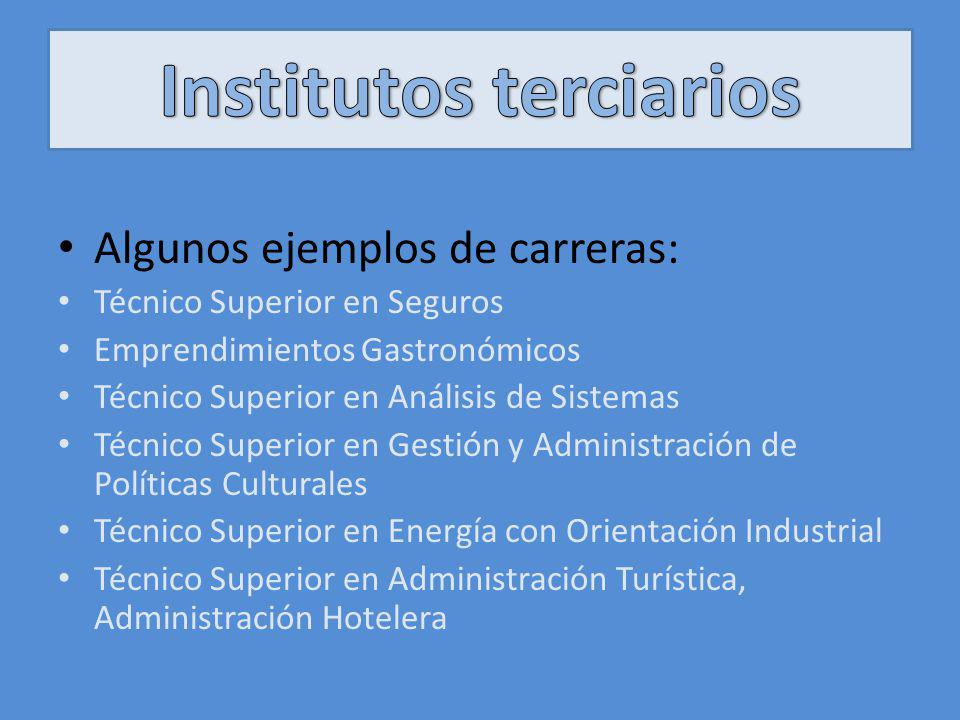 Institutos terciarios