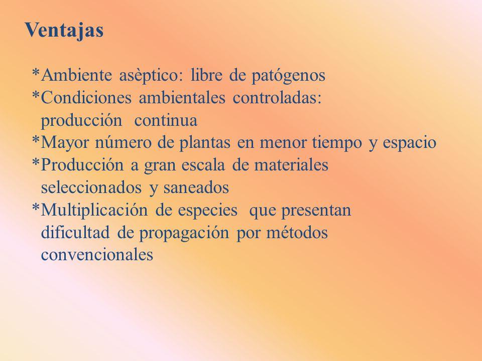 Ventajas *Ambiente asèptico: libre de patógenos