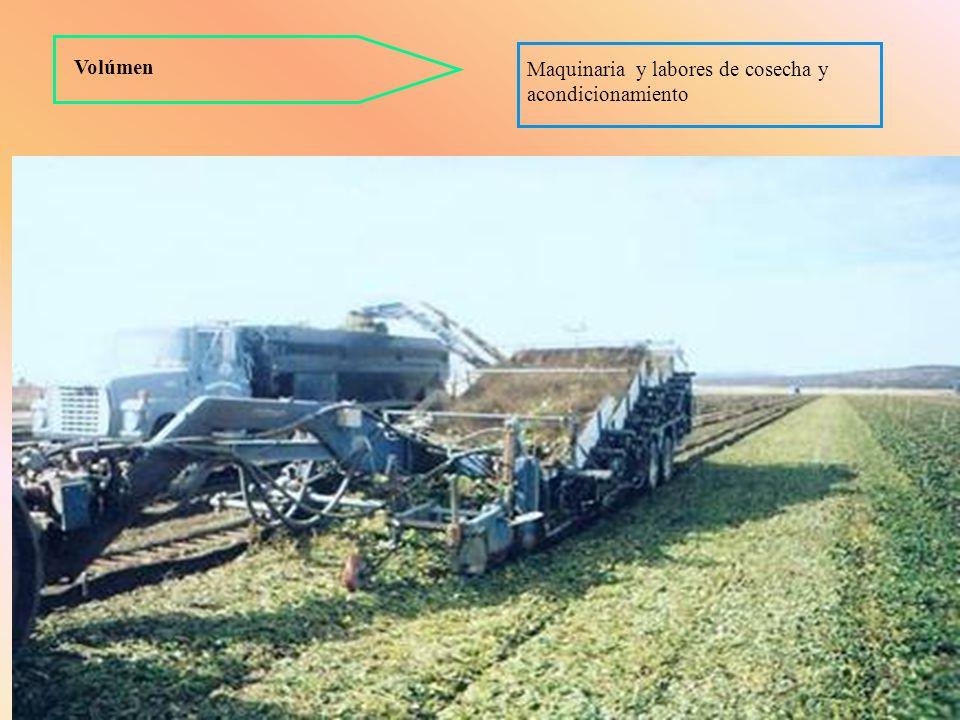 Volúmen Maquinaria y labores de cosecha y acondicionamiento