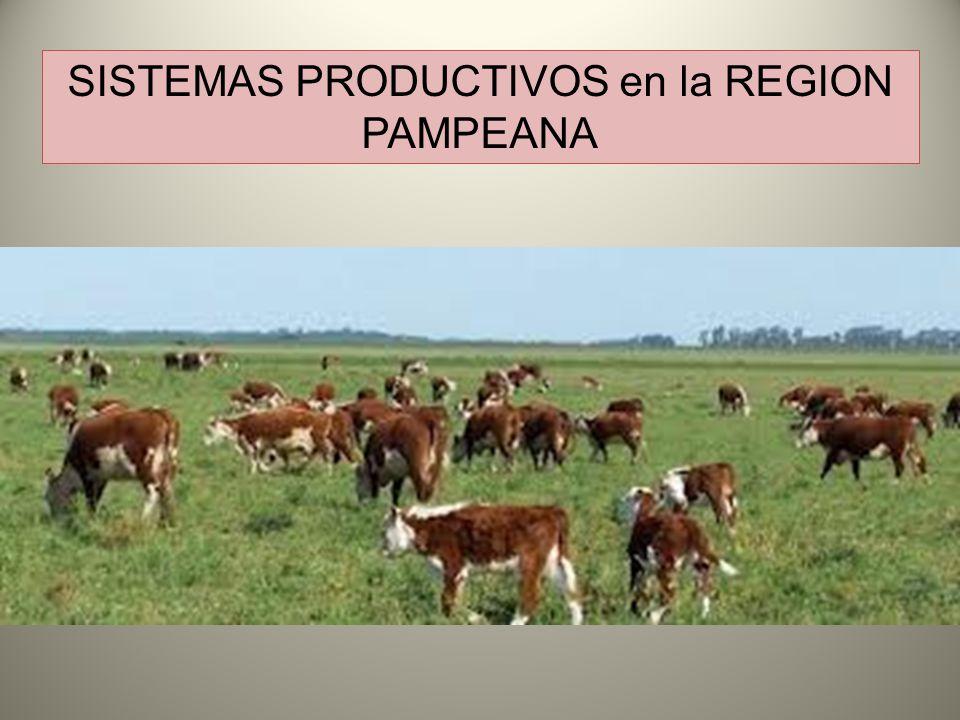 SISTEMAS PRODUCTIVOS en la REGION PAMPEANA