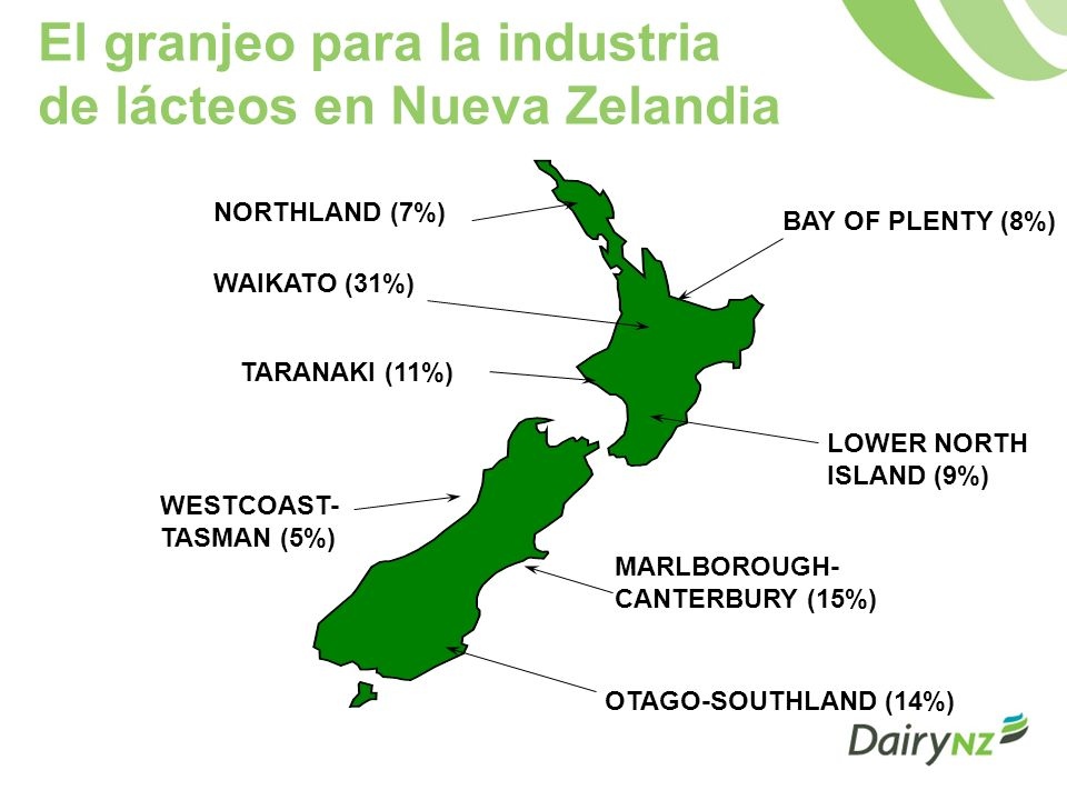 El granjeo para la industria de lácteos en Nueva Zelandia