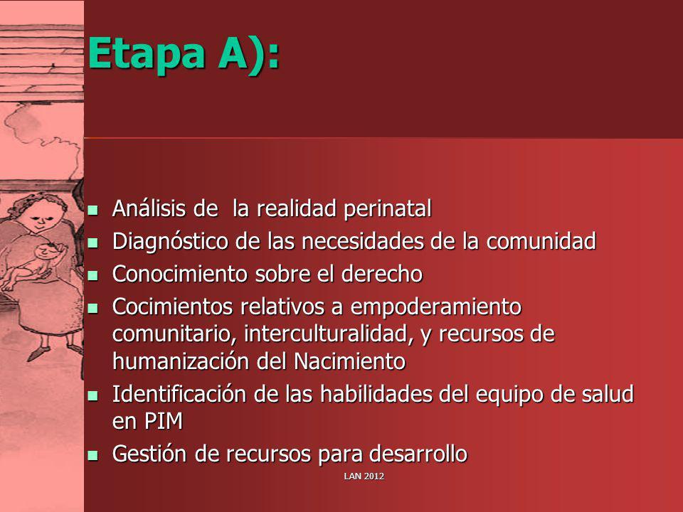 Etapa A): Análisis de la realidad perinatal