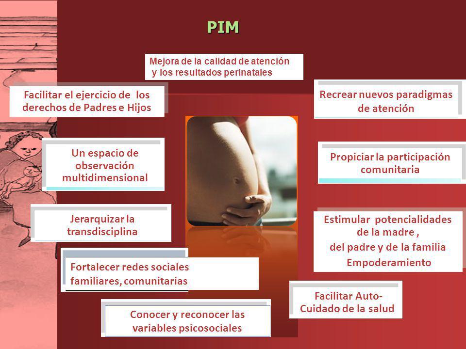 PIM Facilitar el ejercicio de los derechos de Padres e Hijos