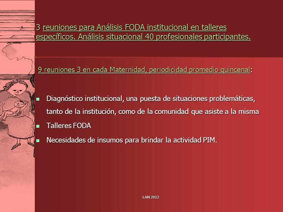 3 reuniones para Análisis FODA institucional en talleres específicos