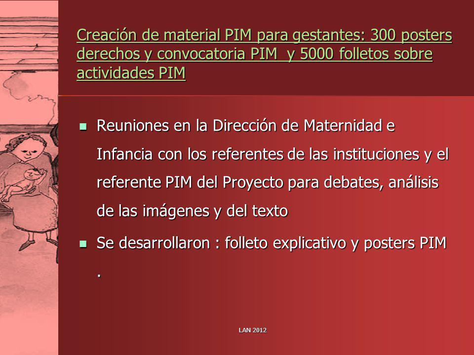 Se desarrollaron : folleto explicativo y posters PIM .