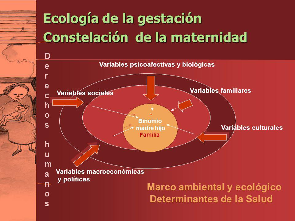 Ecología de la gestación Constelación de la maternidad