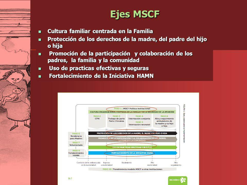 Ejes MSCF Cultura familiar centrada en la Familia