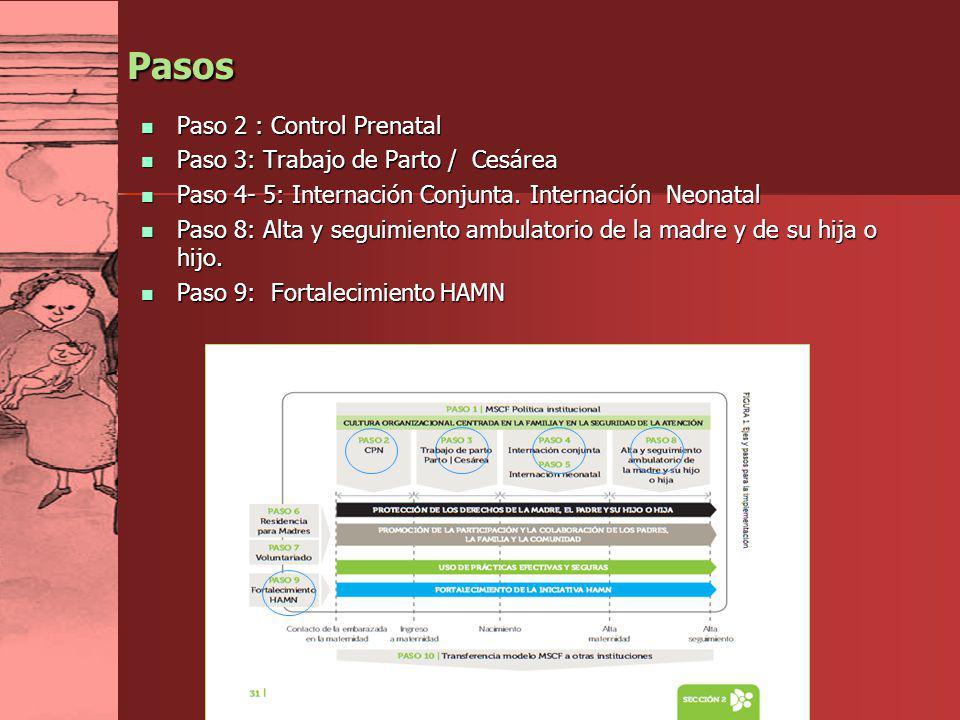 Pasos Paso 2 : Control Prenatal Paso 3: Trabajo de Parto / Cesárea