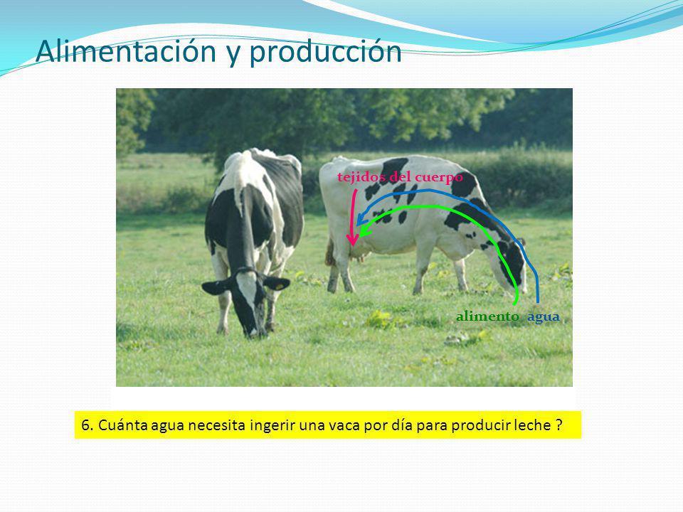 Alimentación y producción