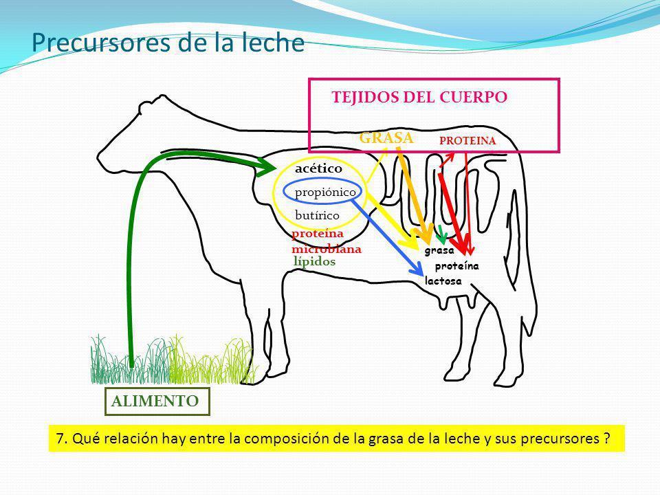 Precursores de la leche