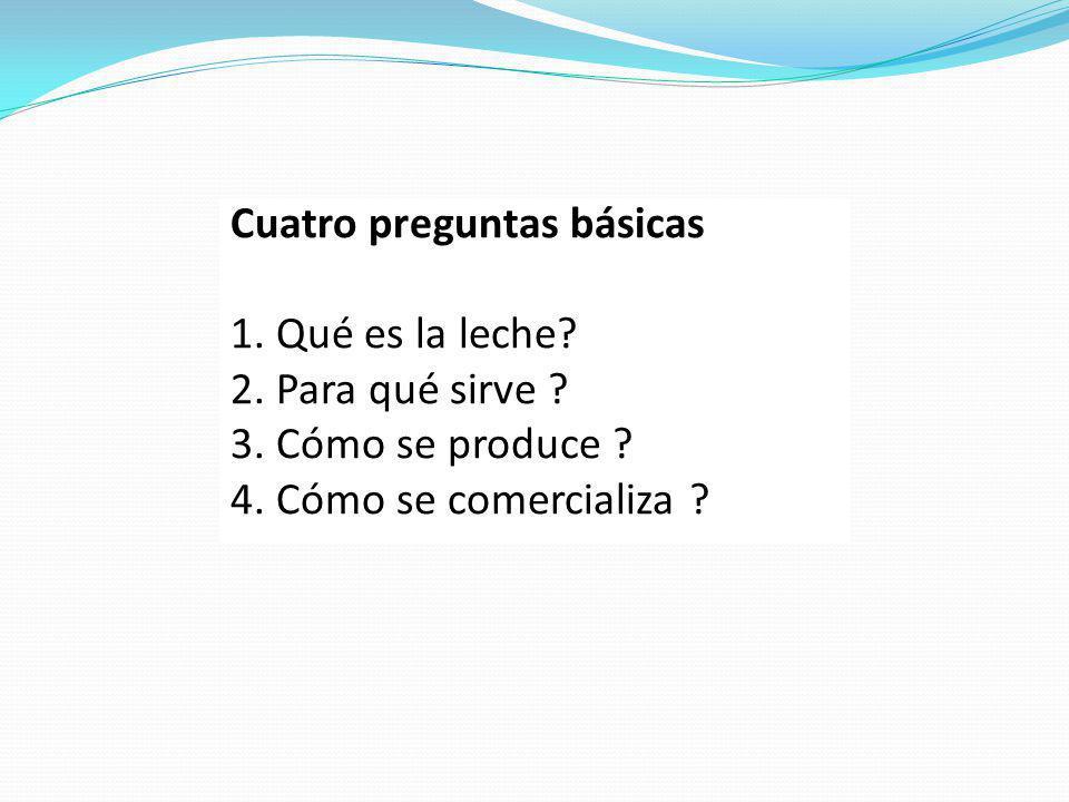 Cuatro preguntas básicas