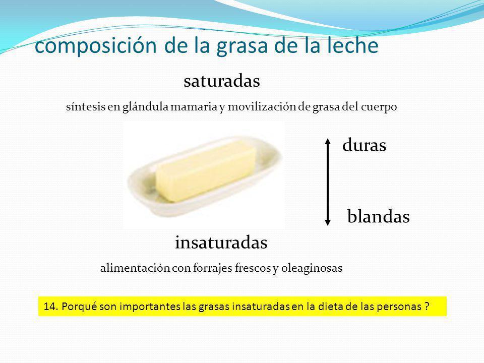 composición de la grasa de la leche