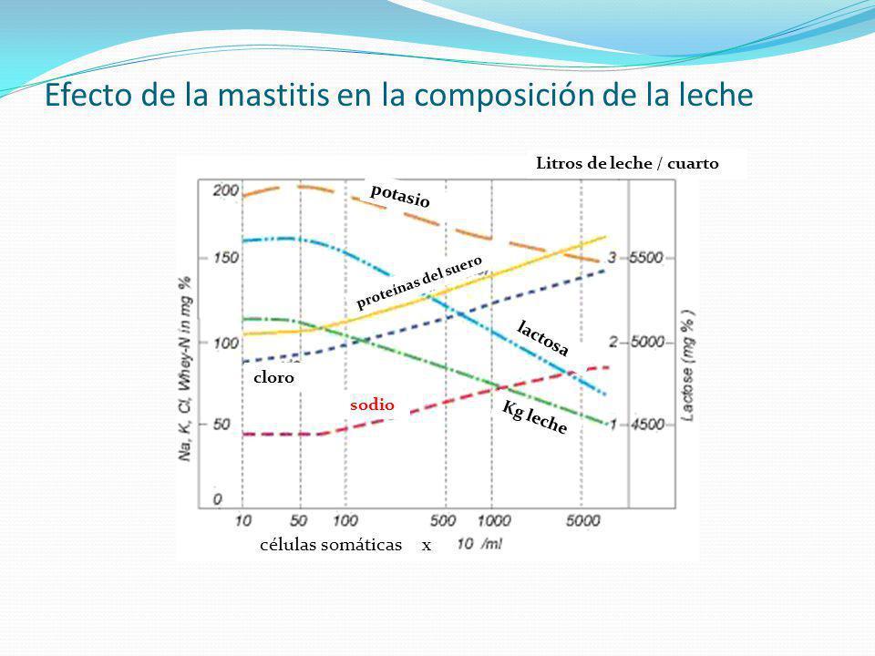 Efecto de la mastitis en la composición de la leche