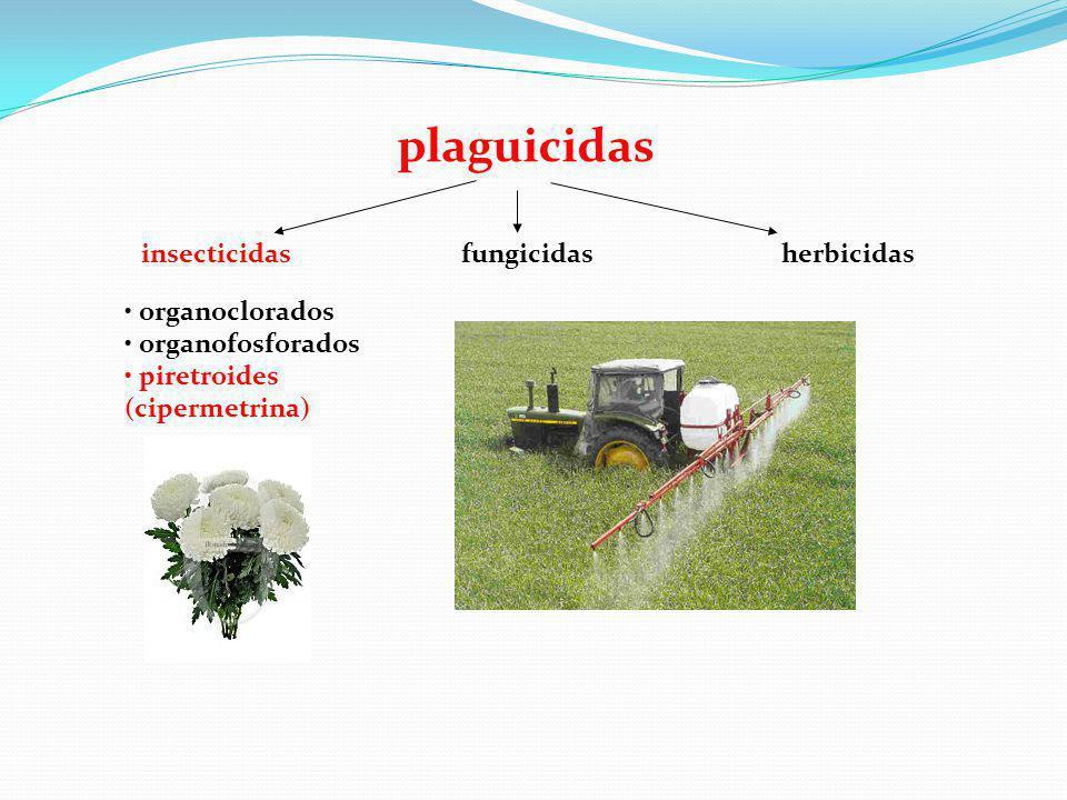 plaguicidas insecticidas fungicidas herbicidas organoclorados