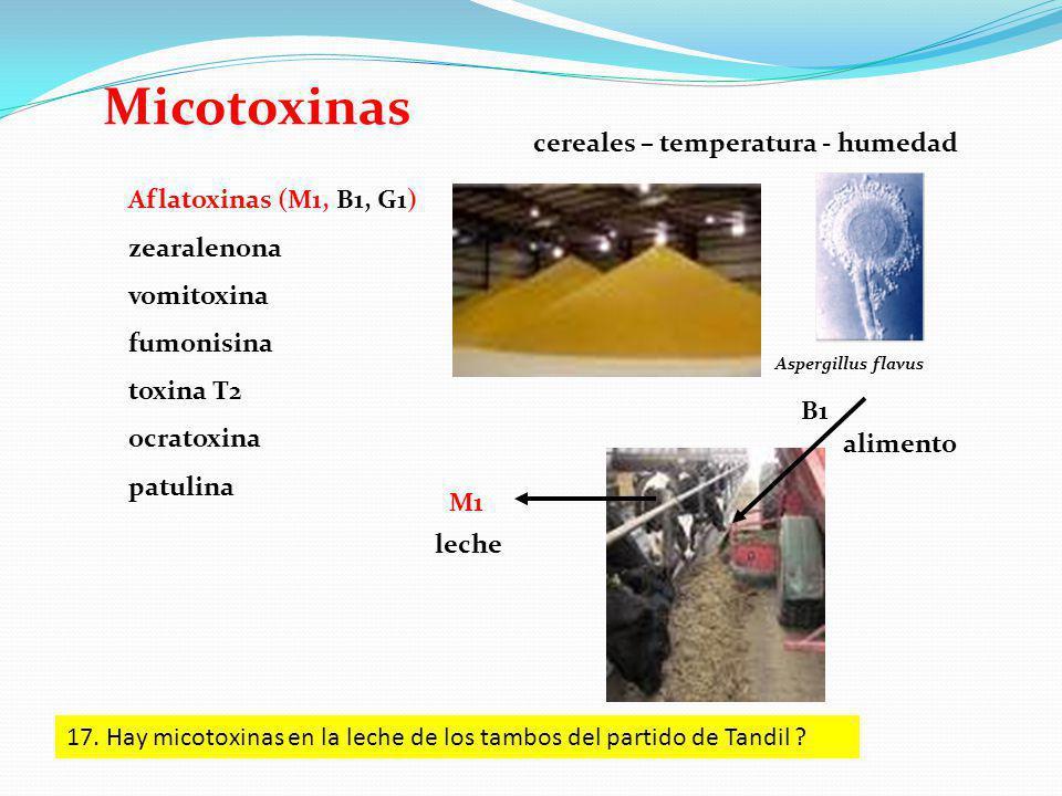 Micotoxinas cereales – temperatura - humedad Aflatoxinas (M1, B1, G1)