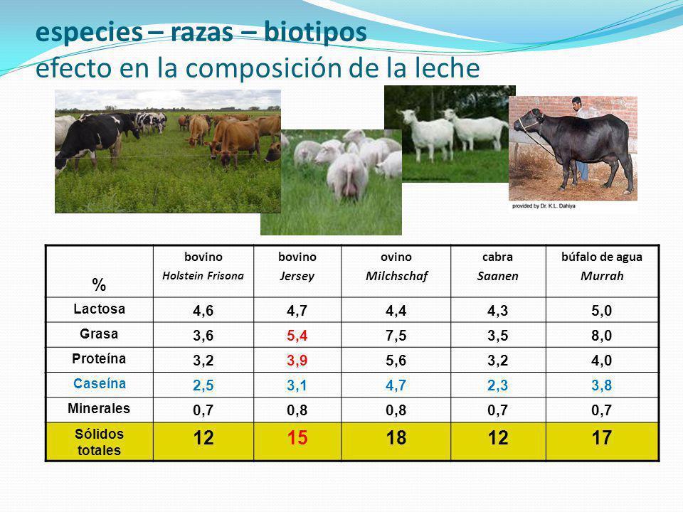 especies – razas – biotipos efecto en la composición de la leche