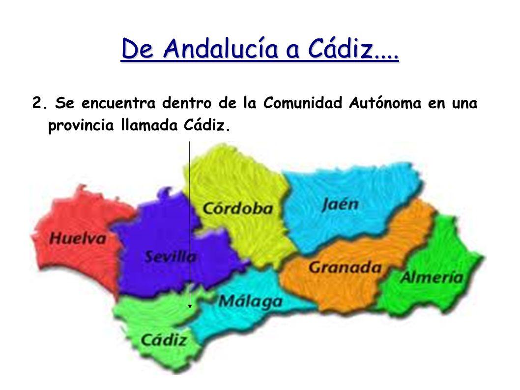 De Andalucía a Cádiz.... 2.
