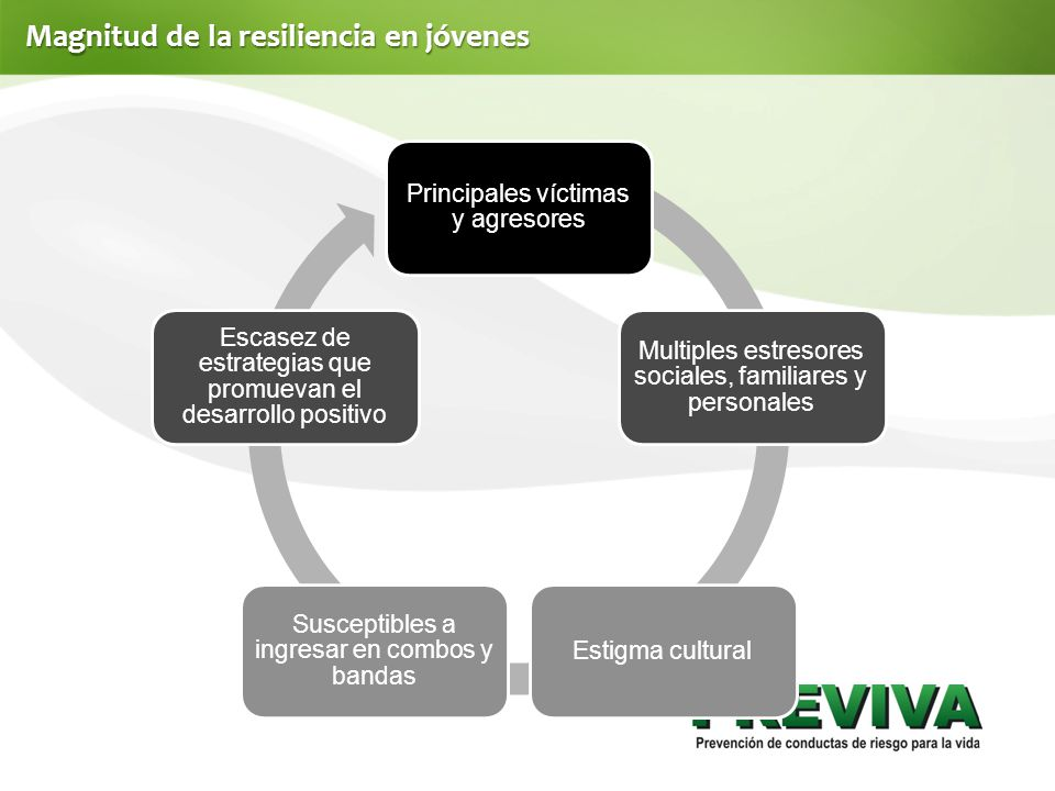 Magnitud de la resiliencia en jóvenes