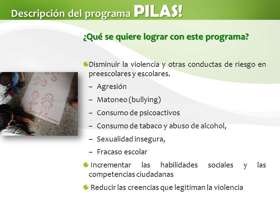 Descripción del programa PILAS!