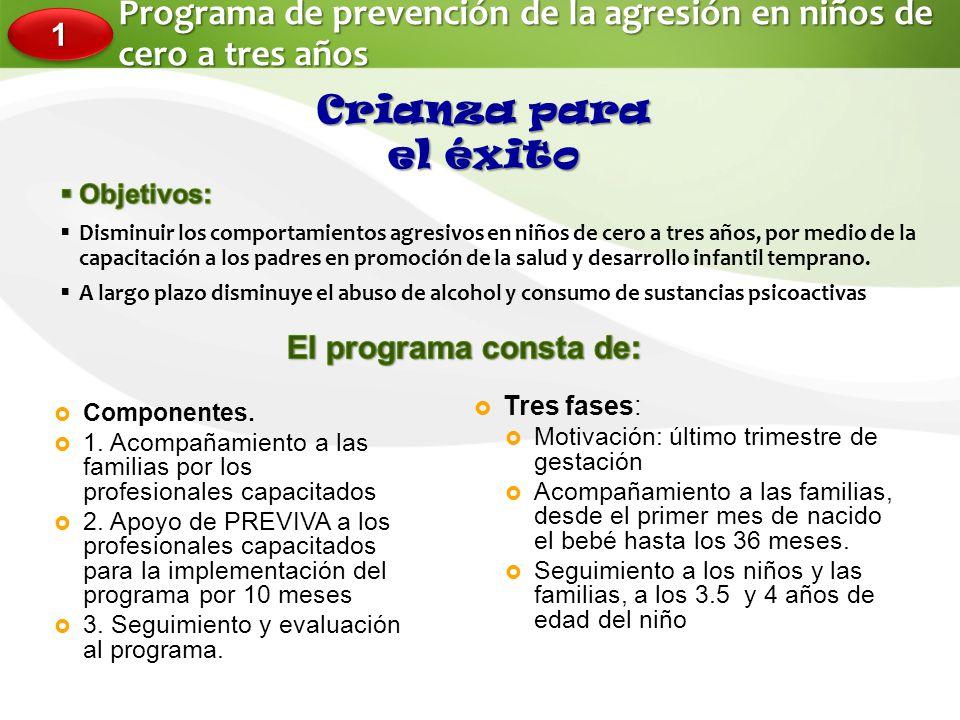 Programa de prevención de la agresión en niños de cero a tres años
