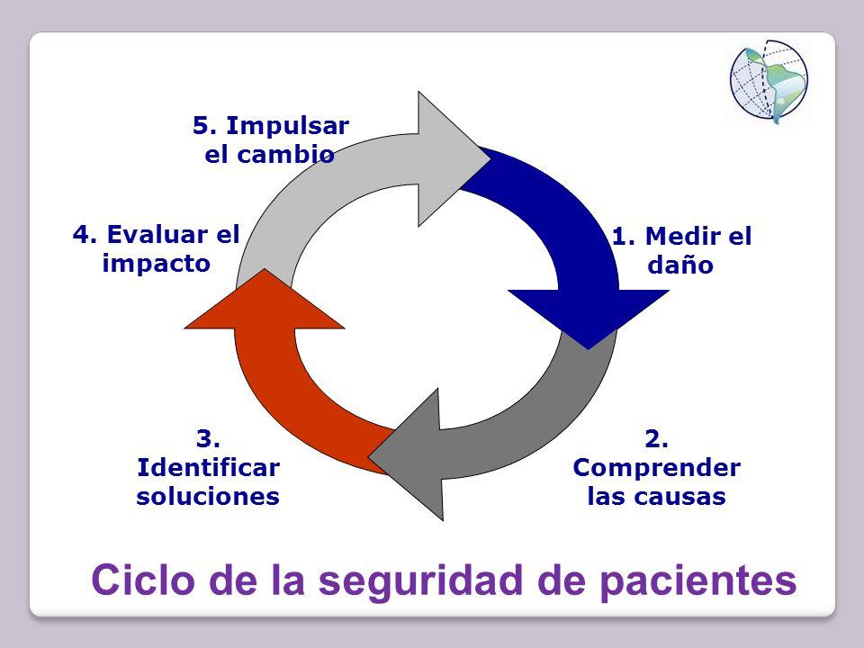 Ciclo de la seguridad de pacientes