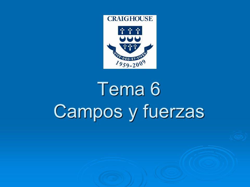 Tema 6 Campos y fuerzas