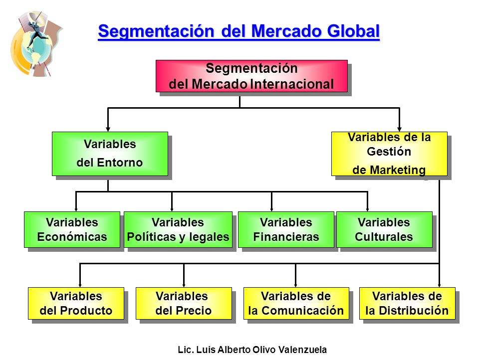 Segmentación del Mercado Global