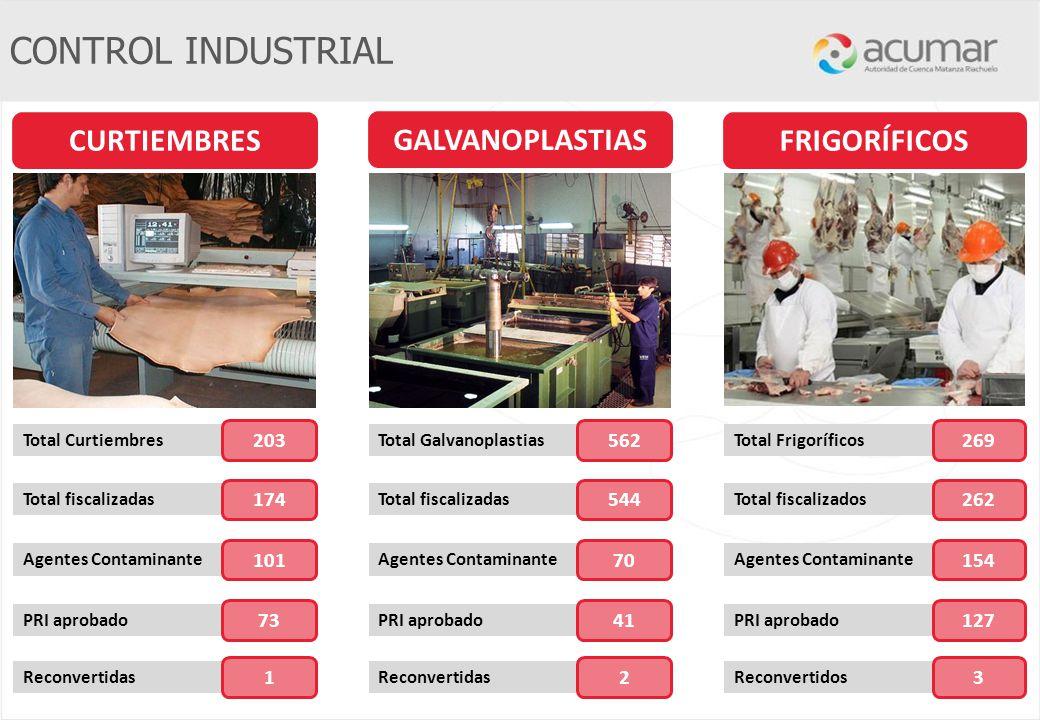 CONTROL INDUSTRIAL CURTIEMBRES GALVANOPLASTIAS FRIGORÍFICOS 203 562
