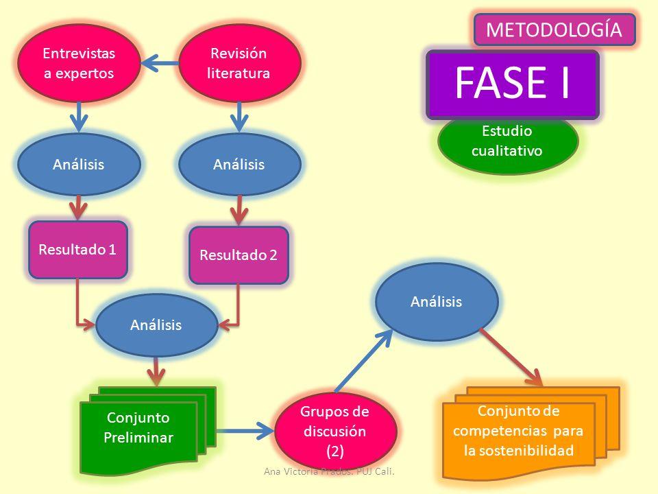 FASE I METODOLOGÍA Entrevistas a expertos Revisión literatura