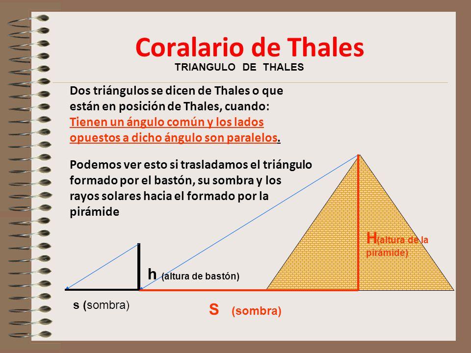 Coralario de Thales H(altura de la pirámide) h (altura de bastón)
