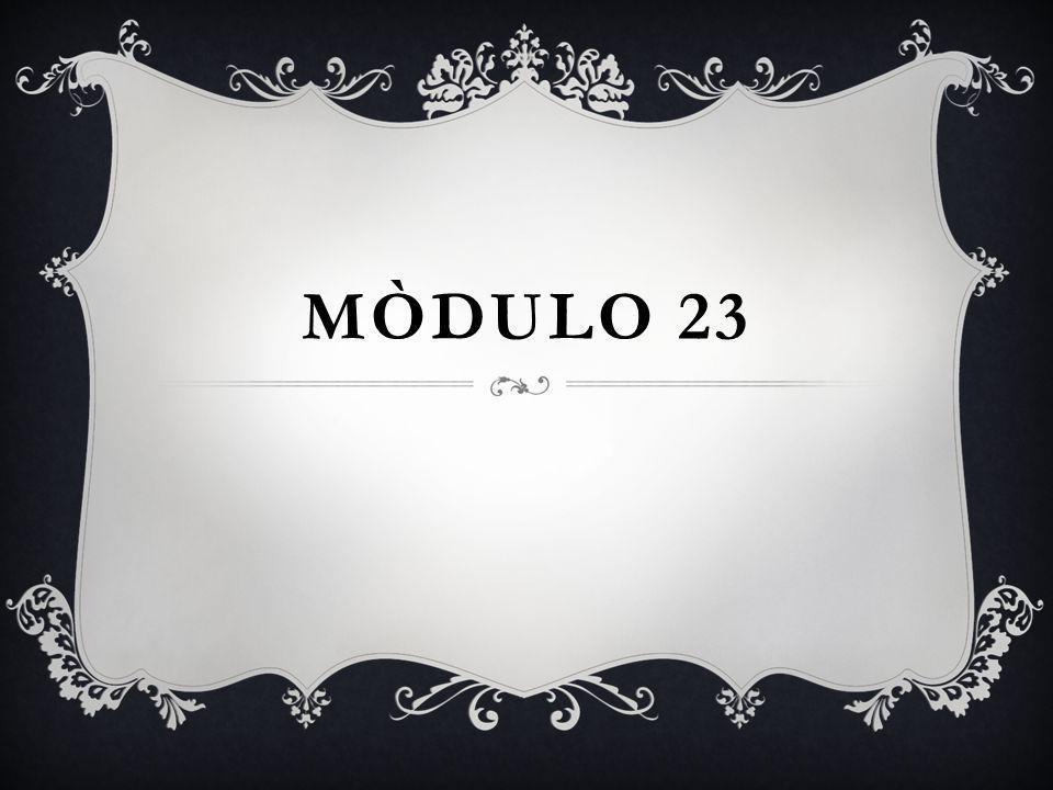 MÒDULO 23