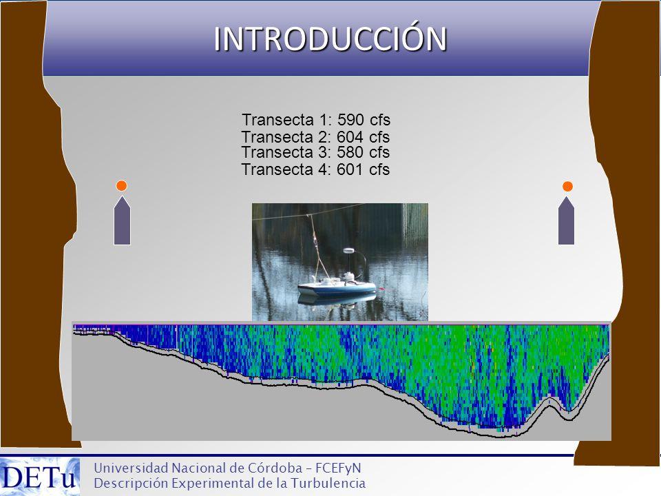 INTRODUCCIÓN Transecta 1: 590 cfs Transecta 2: 604 cfs