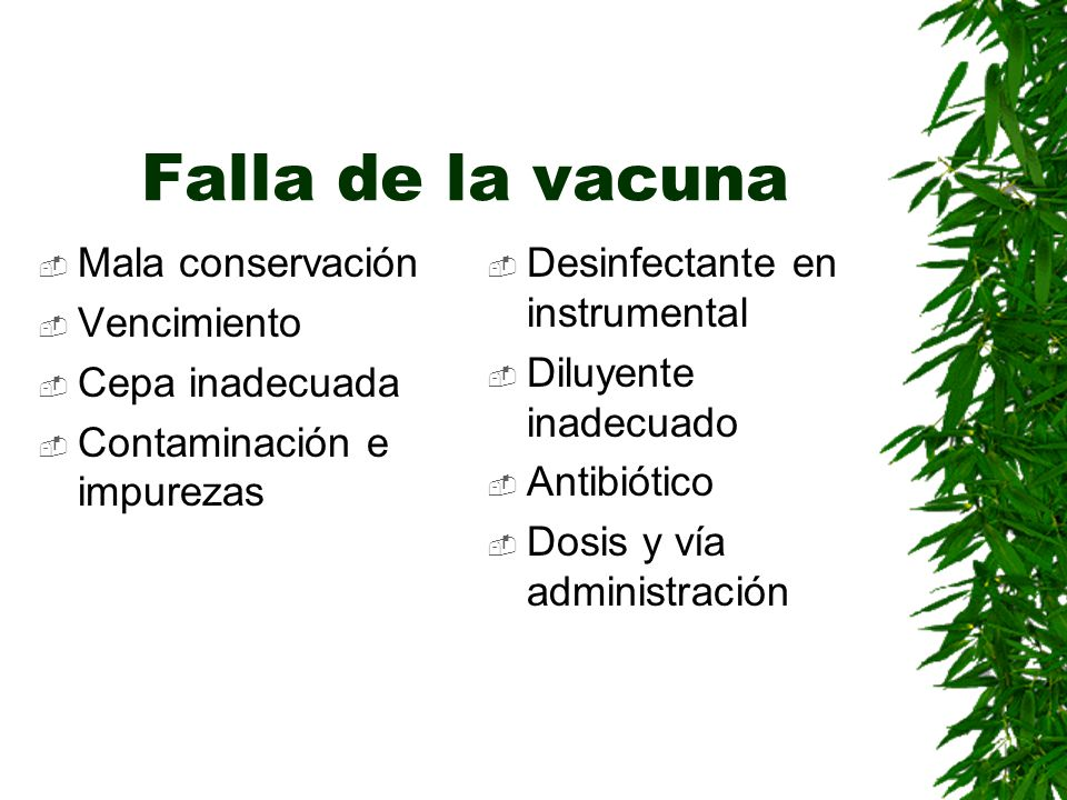Falla de la vacuna Mala conservación Vencimiento Cepa inadecuada