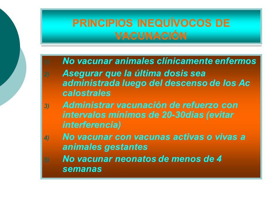 PRINCIPIOS INEQUÍVOCOS DE VACUNACIÓN