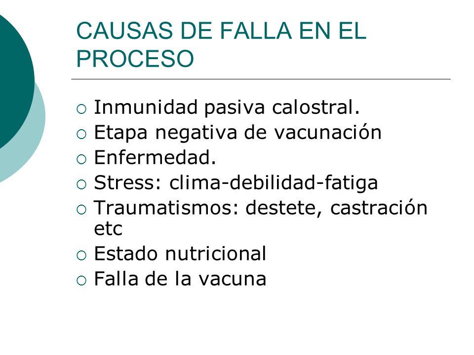 CAUSAS DE FALLA EN EL PROCESO