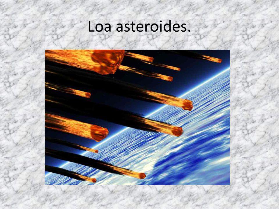 Loa asteroides.