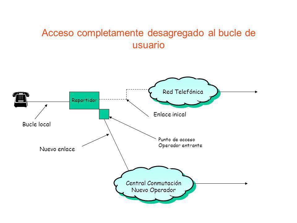 Acceso completamente desagregado al bucle de usuario