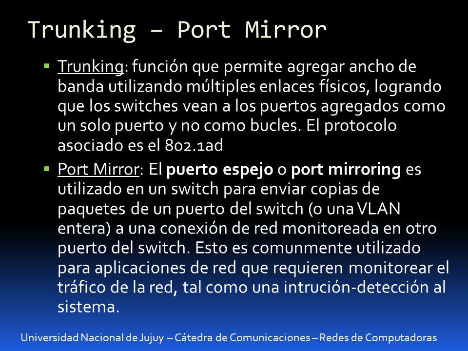 Trunking – Port Mirror