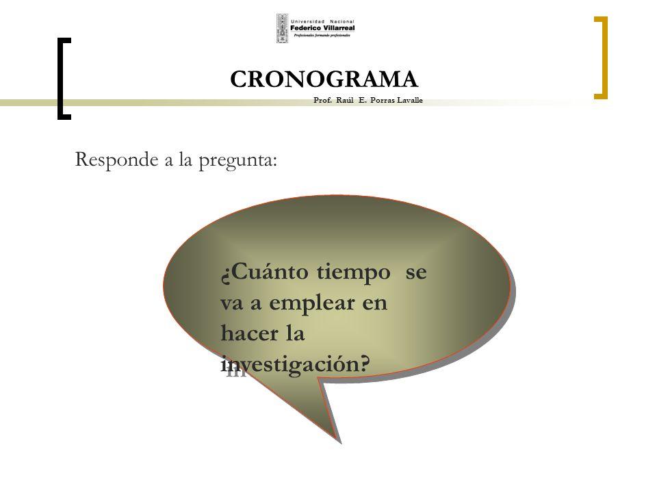 CRONOGRAMA Prof. Raúl E. Porras Lavalle