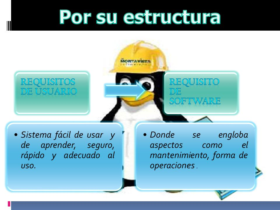 Por su estructura Requisitos de usuario